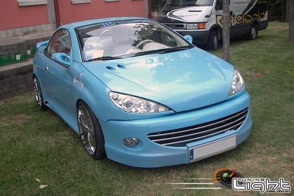 PEUGEOT 206cc ICEMAN CAR